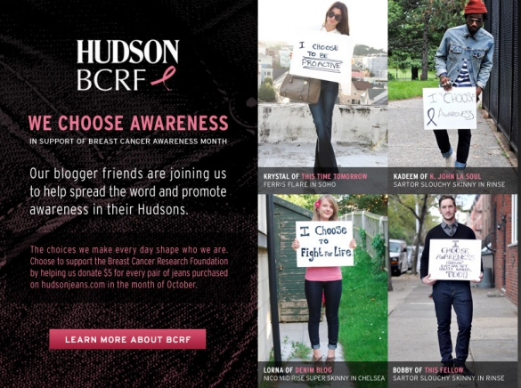 hudson campaign lorna new I Took Part In The Hudson BCRF Campaign
