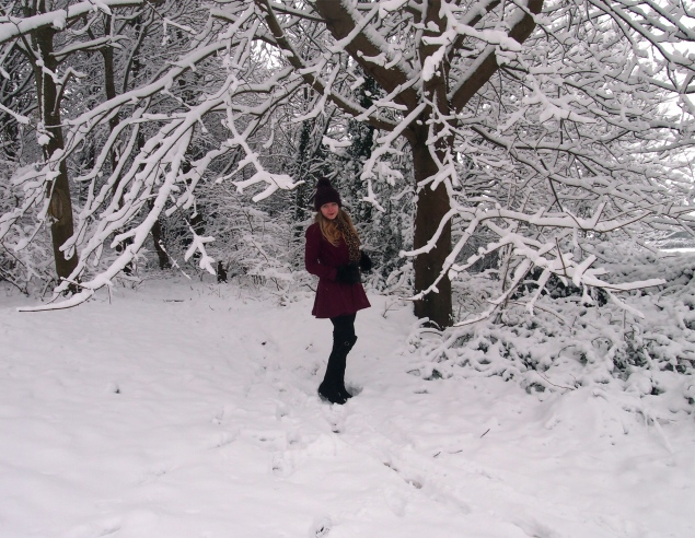 snow-look-winter-wonderland