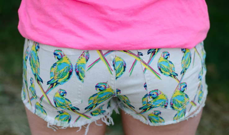 dittos-love-bird-shorts-back