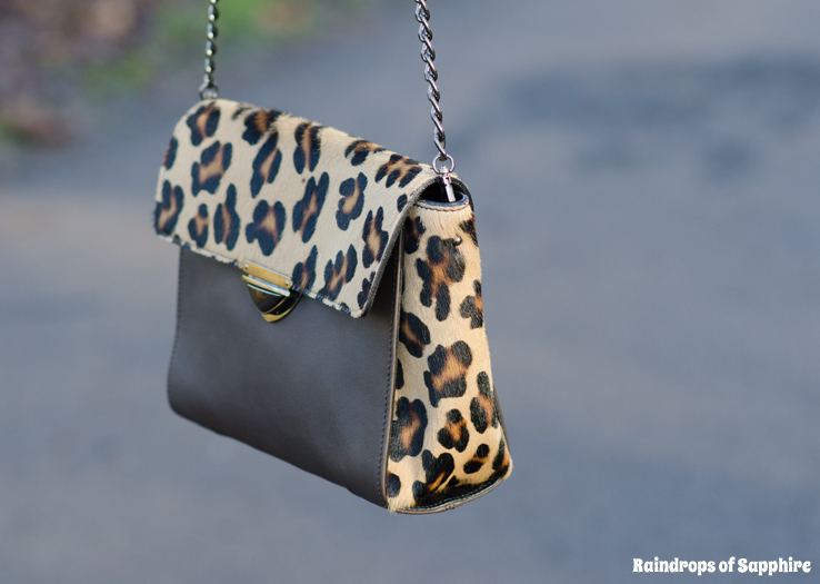 leopard-print-bag-chooset