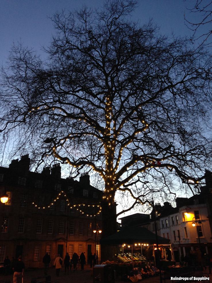 trees-lights-bath-city