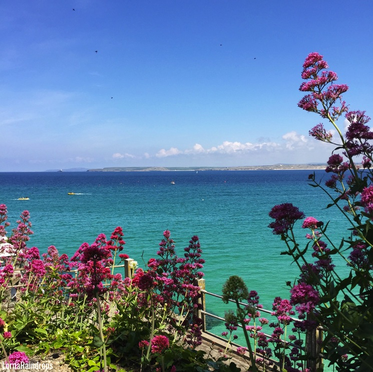 exotic-st-ives-beach