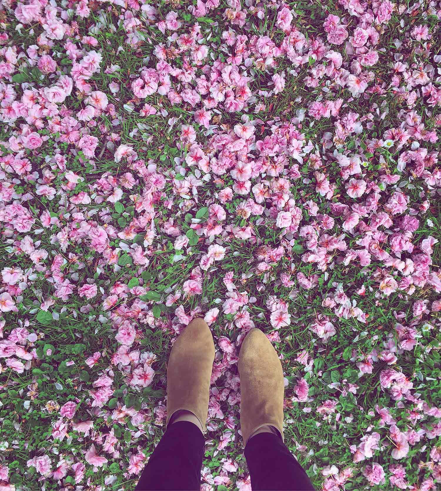 pink-blossom-floor-with-boots