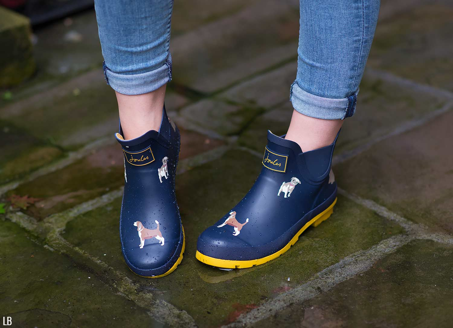 Joules Wellibob Rain Boots in Dog Print Review